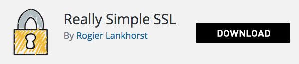 Real Simple download plugin for wordpress