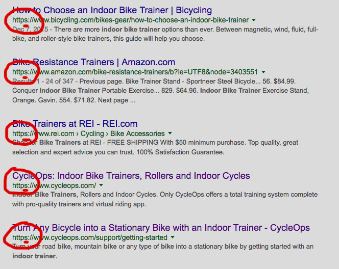 Example of Google page one search results