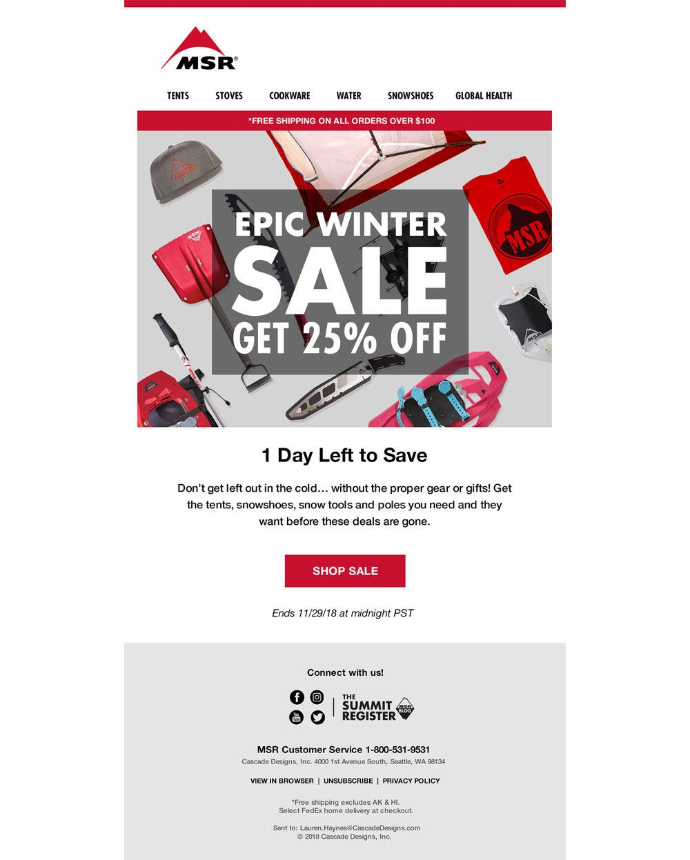 MSR email campaign | Pure Design Group